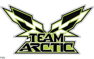 Team arctic decal